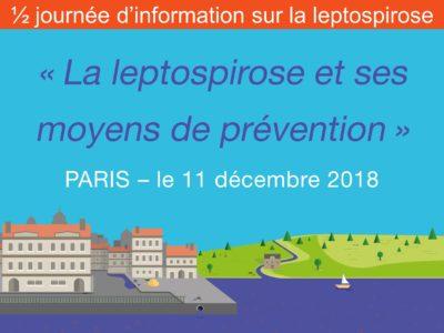lepspirose-humaine-actualité-information-paris2