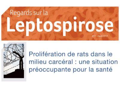 regards-sur-la-leptospirose-11