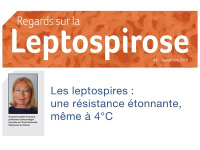 regards-sur-la-leptospirose-9