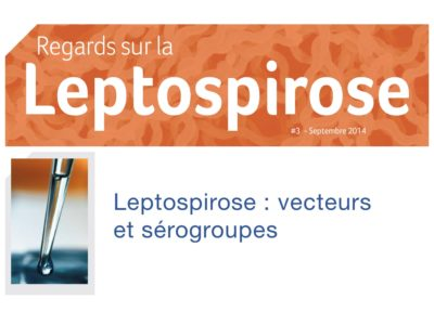regards-sur-la-leptospirose n°3